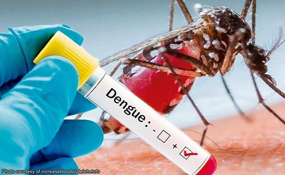 Dengue Cases In Iloilo Rise To 669